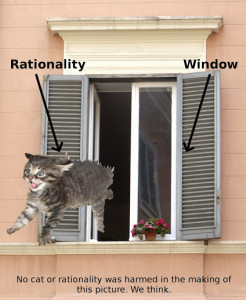 RationalityJumpsOutAWindow